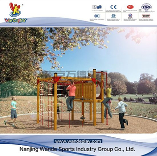 Children Outdoor Wooden Playset in The Park